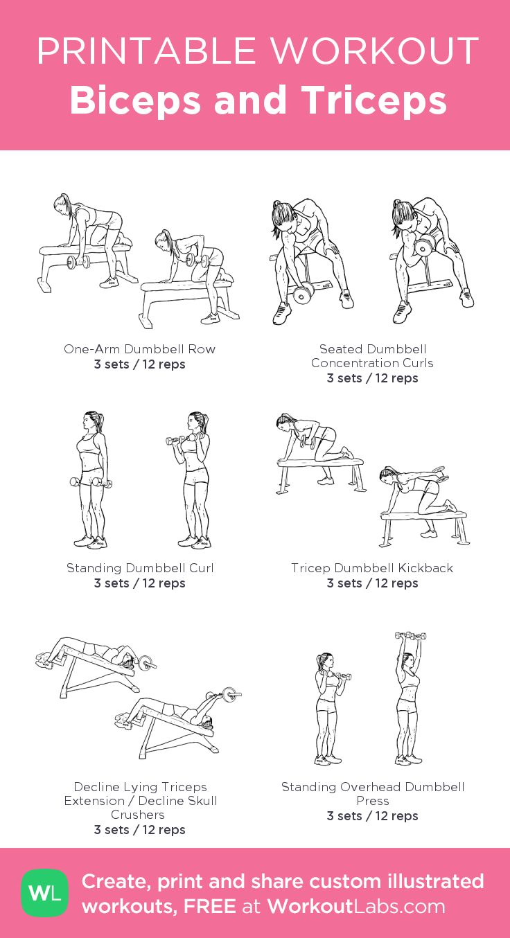 Biceps and Triceps:my visual workout created at WorkoutLabs.com • Click through to customize and download as a FREE PDF! #customworkout