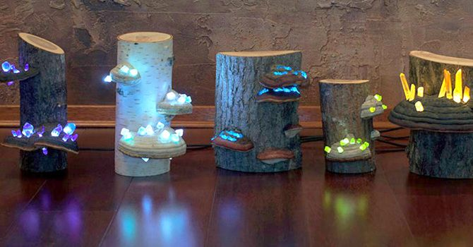 Shroom in the Room is a group of Lithuanian artists who craft natural-looking, one of a kind night lamps out of fallen timber, tree mushrooms and, most ...