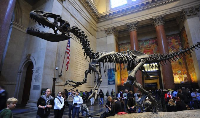 American Museum of Natural History is one of the best museums in NYC