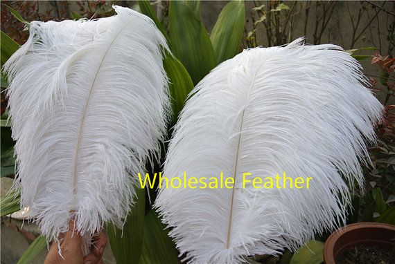 Ostrich Feathers Color:as picture Length:For you pink Quantity:100 pcs per size  Shipping time:(To: USA,CA,AU,JP,GB,FR,Europe) 7-12days (10%) 12-16days (80%) 16-25days (10%) Most of the packages will take 12-16days, If you need them urgently,we can also choose Rush shipment DHL,FEDEX or EMS for you, Shipping time is 6-9days,but it will cost you extra $18-$22. If you need,we will send you an invoice for that rush shpping cost. Please note, We have many sizes,colors and type for you pick.Any…
