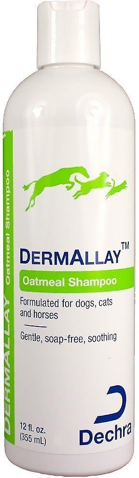 DermAllay Oatmeal Shampoo for Dogs, Cats & Horses is a general purpose oatmeal shampoo that soothes the skin as it cleans. Not only does it moisturize and condition, but it also helps relieve itchiness and restores damaged skin. The active ingredient in this therapeutic shampoo is a ceramide complex that helps rebuild and maintain a strong, healthy skin barrier. This is important for preventing water loss that leads to dry skin and also for protecting against allergens.