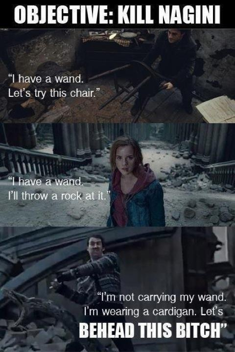 Neville: He knows his shit.  P.S. Voldemort had cast many protective spells upon Nagini because she was a horcrux. Most wand magic would not work on her. Hence the use of chairs and rocks and the Gryffindor sword enhanced with Basilisk venom. You stupid muggle