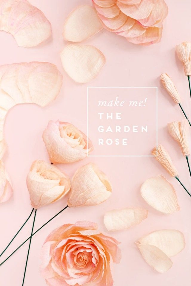 Oh So Beautiful Paper: Fresh Cut Paper Flowers: The Garden Rose