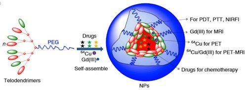Novel multifunctional nanoparticle for diagnosis and therapy