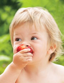 Summer fruit and babies - a good mix? | Forbaby.co.nz