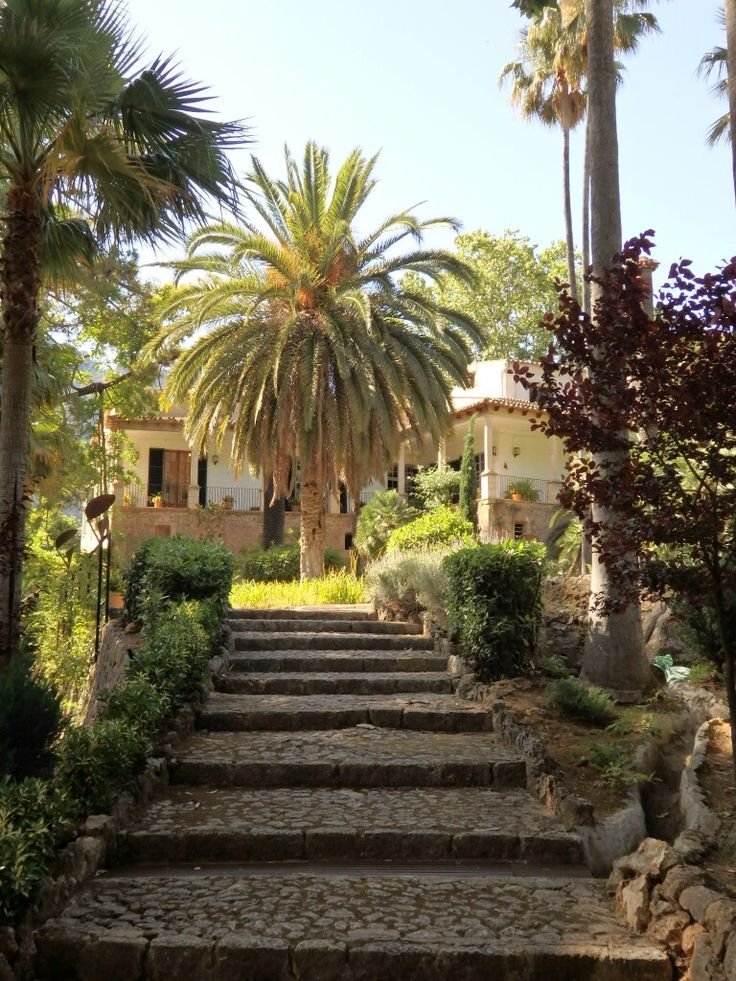 Gärtner Mallorca 229 best mallorca images on destinations