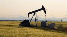 Energy Minister Margaret McCuaig-Boyd said the province's NDP government will both take a leadership role on the climate-change file and stand up for Alberta's energy industry – hammered by low crude and natural gas prices and limited pipeline access to global markets. (Todd Korol/Reuters)