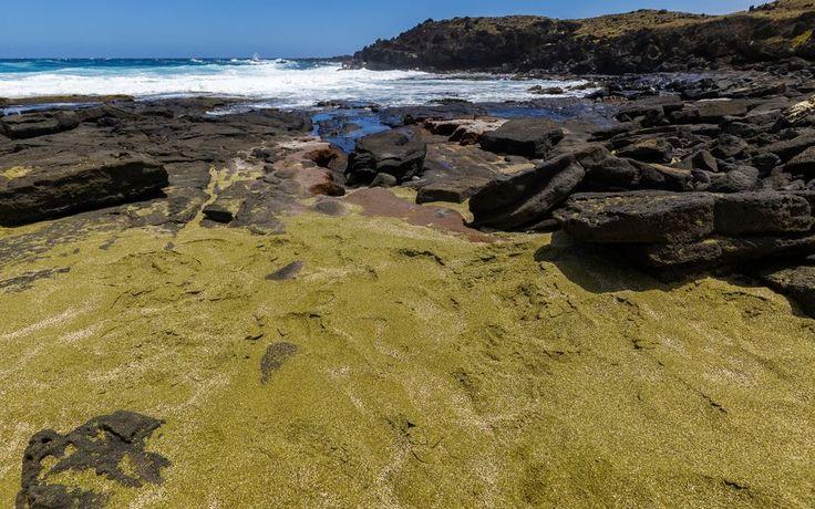 Green Sand Beach: Papakolea Beach - Hawaii Island, Hawaii