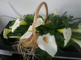 Resultado de imagem para jarros flor