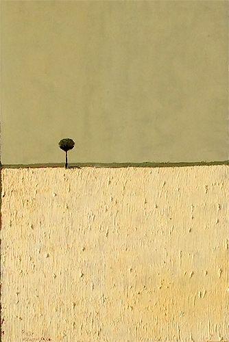 Carmel Art : Pieter Van Der Westhuizen