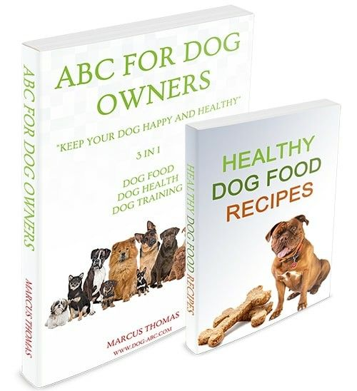 Abc For Dog Owners Dog Owners Dogs Dog Care
