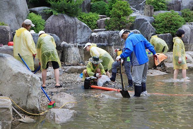[摂理ニュース]池の掃除002