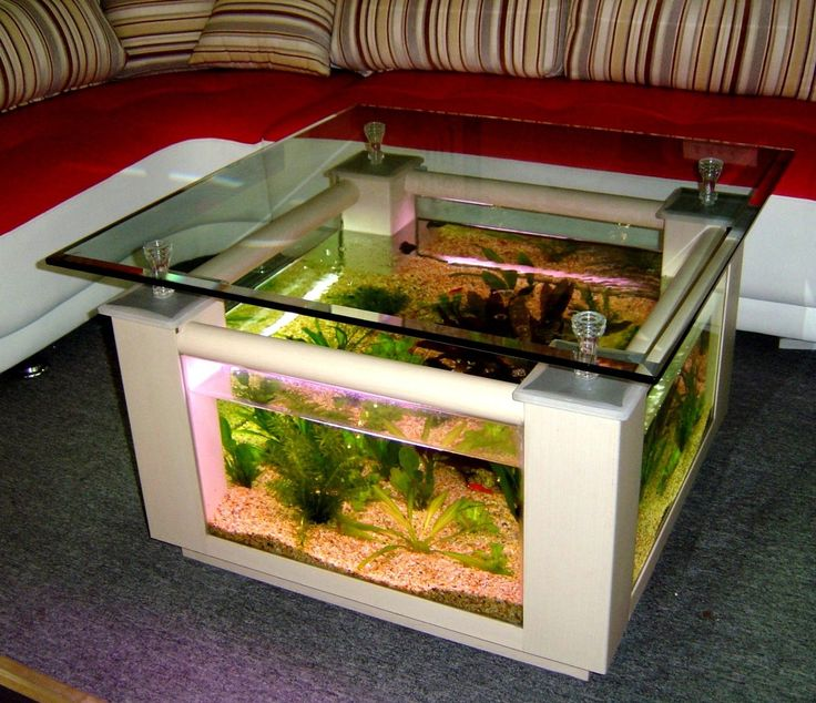 57 Gallon Square Coffee Table Aquarium Fish Ready With Light And Filter Half