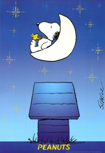 Snoopy and Woodstock floating amongst the stars