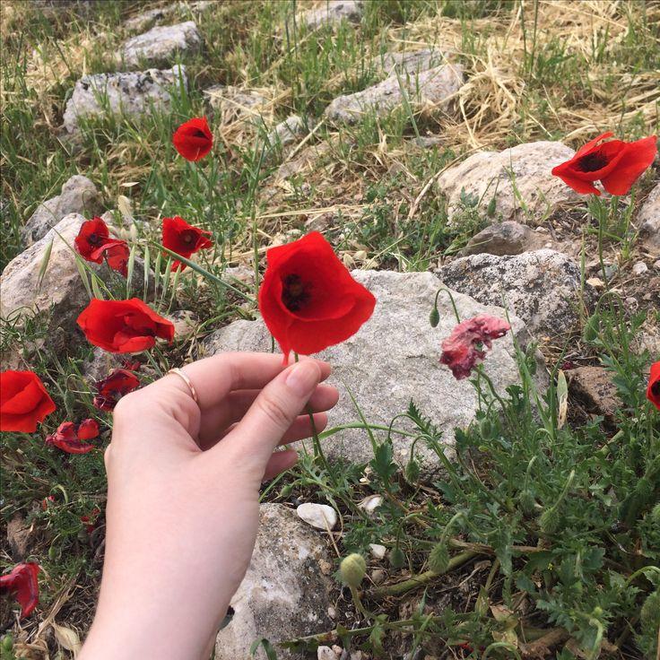 Ruhumun çiçeği