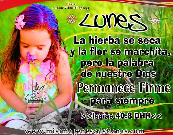 Centro Cristiano para la Familia: FELIZ LUNES  Podemos confiar en el amor, la palab...