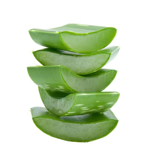 Using Aloe Vera for hair can help to prevent or stop some types of hair loss, promoting a healthier scalp and hair regrowth. www.AloeLiving.net
