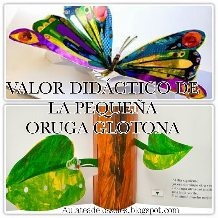 42 best pequeña oruga images on Pinterest | Hungry caterpillar, Eric ...