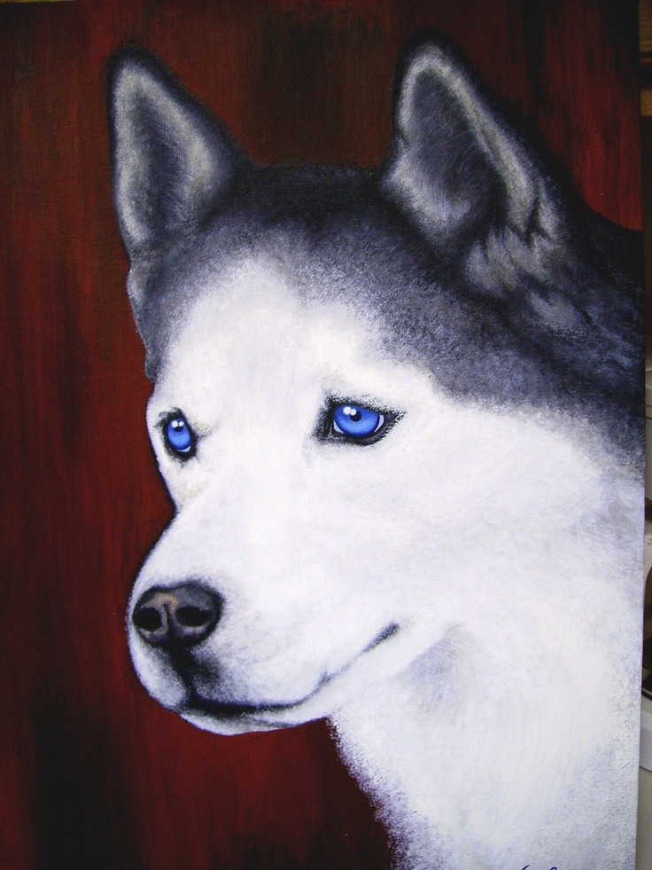 A Siberian Husky Painting I Haven T Completed Yet I Am