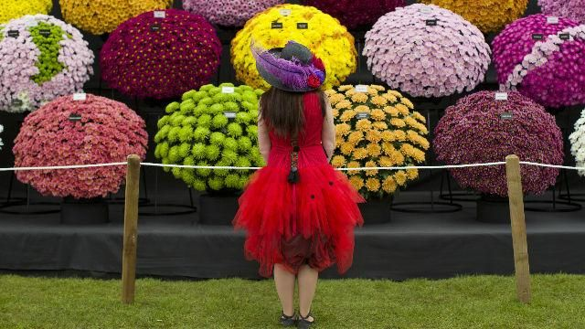 Chelsea Flower Show in May