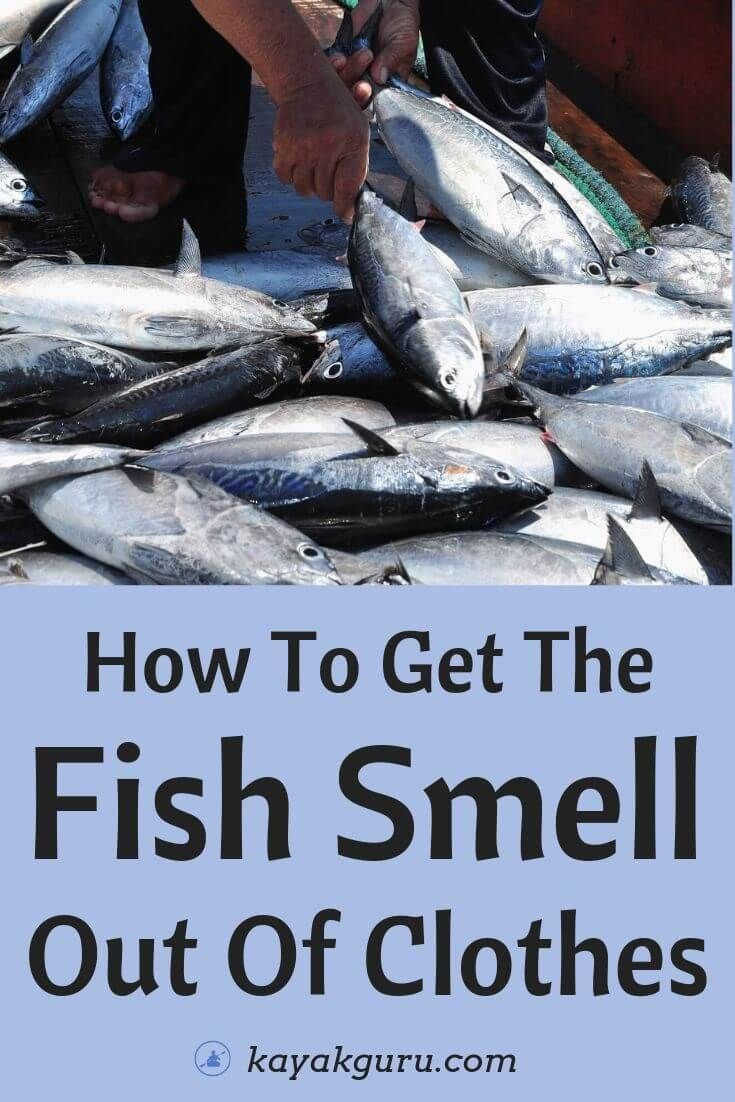 6fb19b4a994a2f25d03f93c3560dd259 - How To Get The Fish Smell Out Of The House