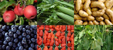 Hvert år kommer over 400 000 tonn frukt og grønnsaker til Norge. Av disse kan både illegale og uregistrerte midler ha blitt brukt i produksjon.