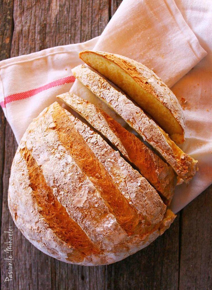 paine fara gluten, paine fara framantare, paine rustica cu cartofi fara gluten, retete fara gluten