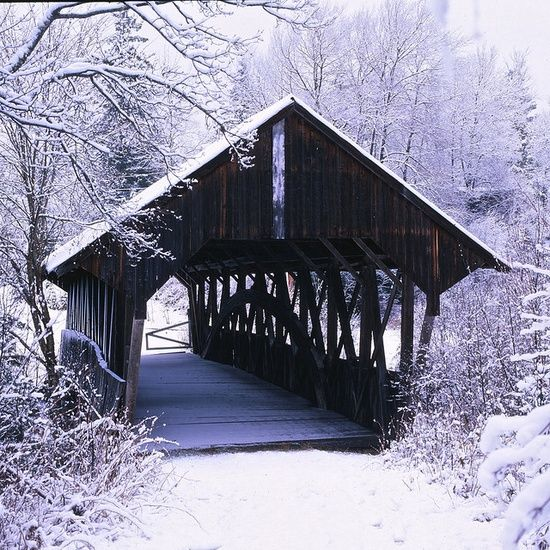 old bridges on pinterest | ye old covered bridges... / The Pittsburg-Clarksville Covered Bridge,