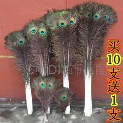 Импортный экран естественного 25-110cm реальных павлиньих перьев павлиньи перья ваза специального Домашнее украшения