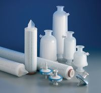 Capsule Filters Market Outlook, Geographical Segmentation, Industry Size & Share, and Qualitative Analysis for next 5 years