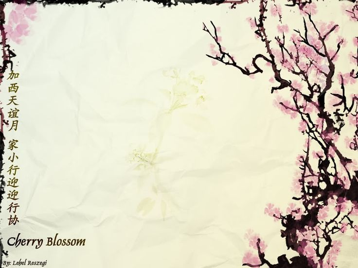 Memoirs Of A Geisha Picture And Wallpaper Find This Pin More On Cherry Blossom Sakura