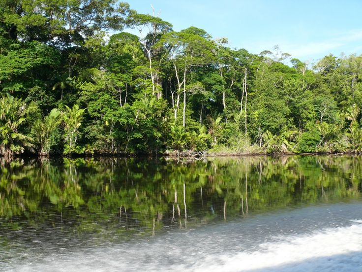 21 places you have to see by water: TORTUGUERO NATIONAL PARK, COSTA RICA  Along the Caribbean coast of Costa Rica (Province of Limon), Tortuguero National Park can only be explored by boat. Tortuguero is home to 11 different habitats, including rainforest, palm forest, mangroves, swamps, beaches, and lagoons, and has incredibly diverse wildlife.