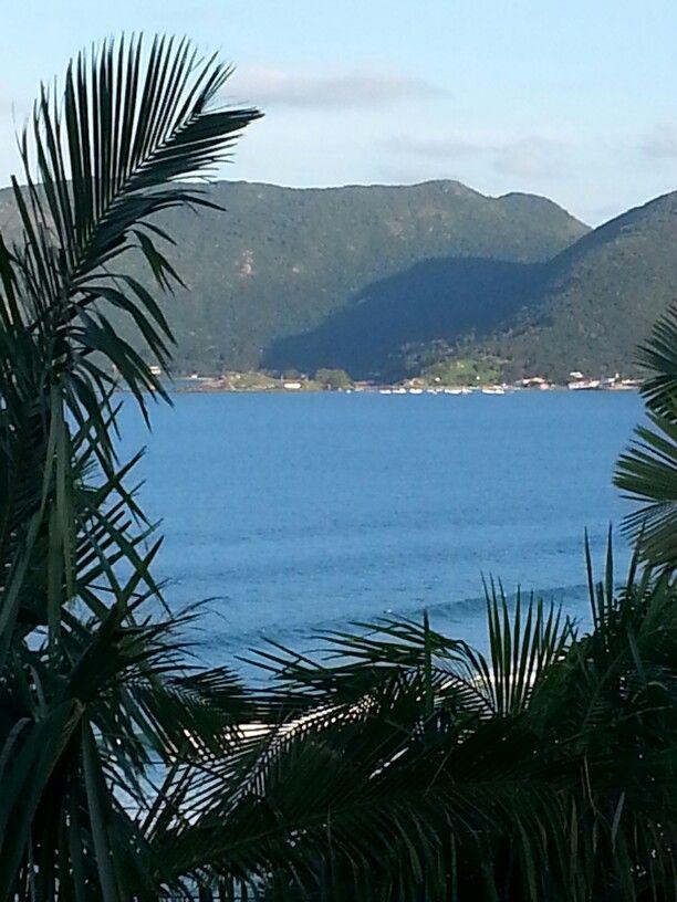 Praia da Armação vista do Morro das Pedras - Florianópolis