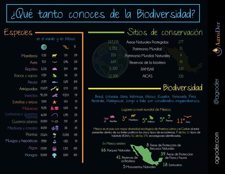 #Biodiversidad