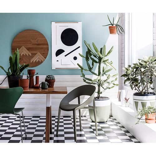 Take a leaf out of real living's book with the best indoor plants for air purification in your home.