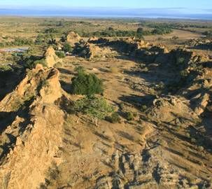 Big sky country - Greater Mapungubwe Transfrontier Conservation Area
