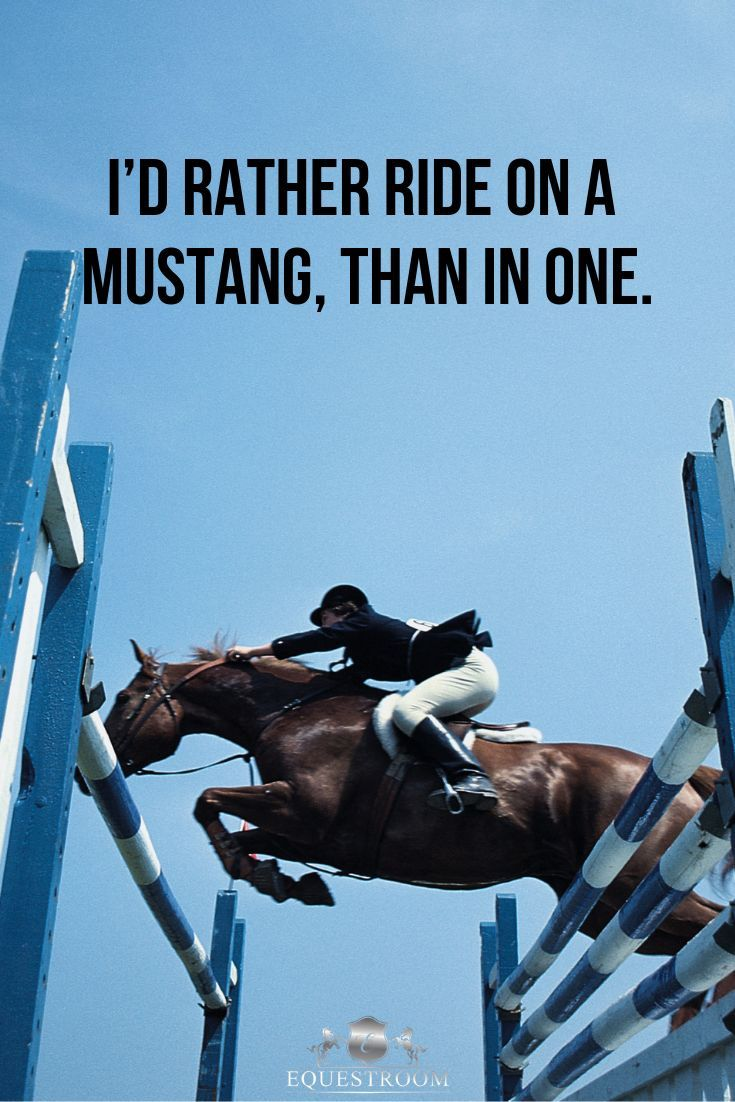 Horse quote. #equestrian #horsequotes #horse | Tips for the ...