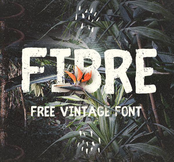 Best Free Script Fonts for Logo Design & Logotypes (20 Fonts) - 4