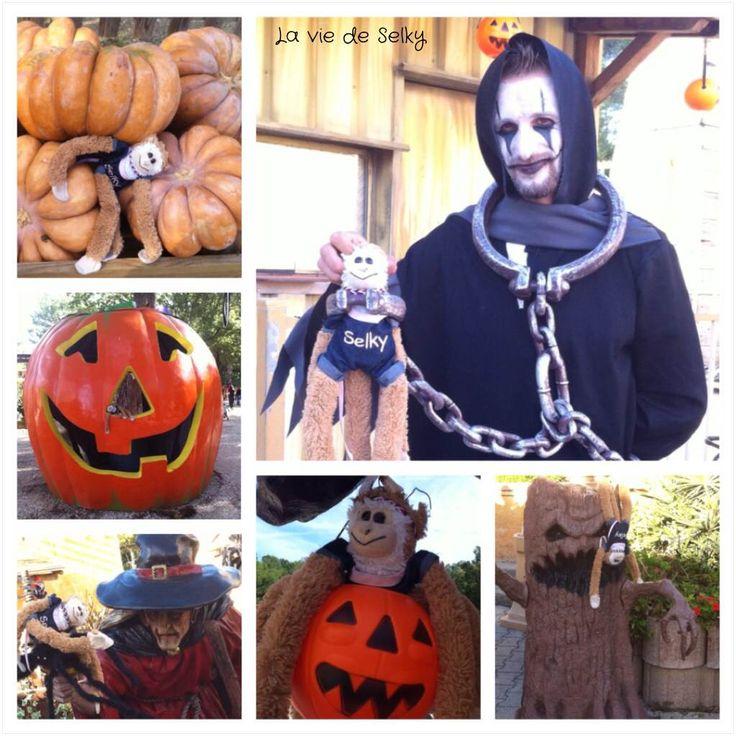 Selky a visité OK Corral pendant Halloween. Selky te raconte sa journée en famille à OK Corral, un parc d'attractions ambiance Far West avec du manège pour les petits, de l'indien et de la citrouille!