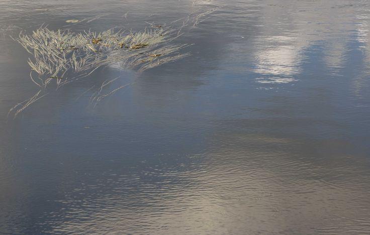 Still waters, 2016 @Mirja Paljakka photography