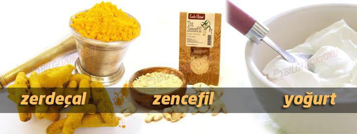 zerdecal-zencefil-tarcin-yogurt-kuru