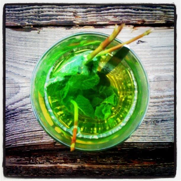 #tea #mint