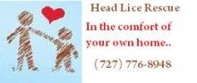 Hire a professional head lice removal service company and get quick results. Servicing all locations in and around Palm Harbor, Clearwater and St. Petersburg, Florida.