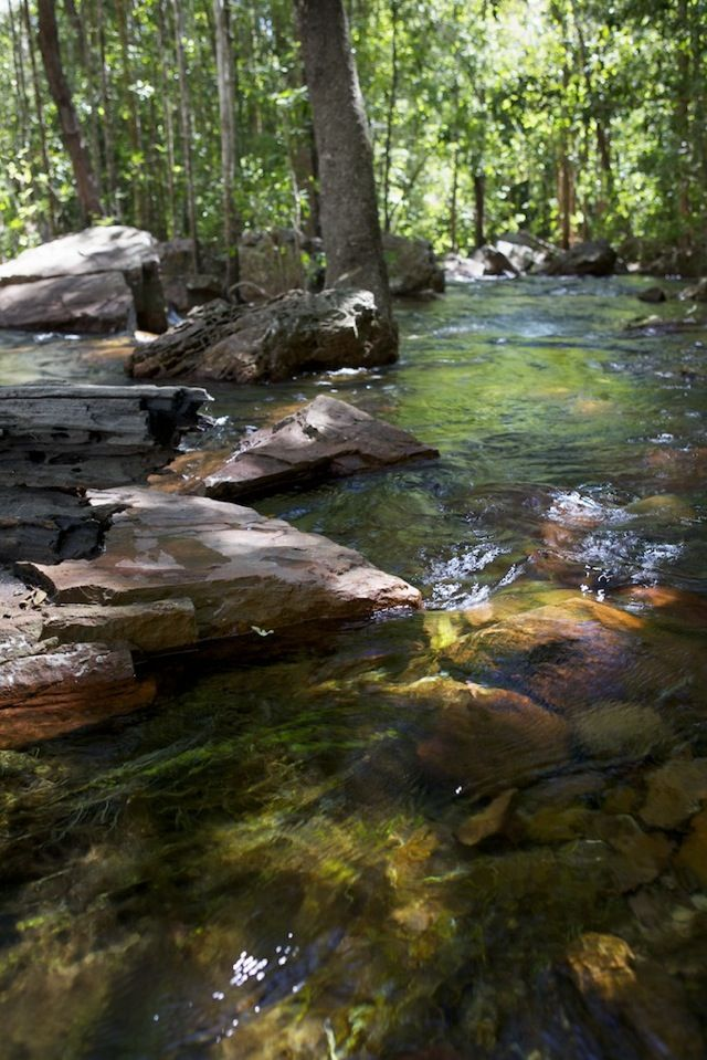 A creek...to fish