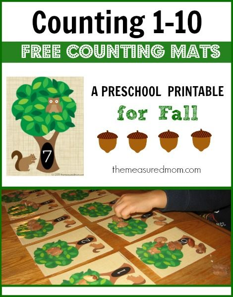 Free fall counting mats!  Great for kids learning to count objects up to 10.