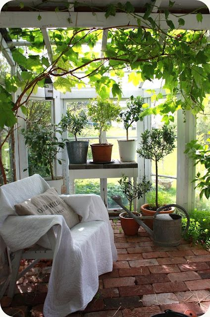 Beautiful garden room/ conservatory with lovely red brick floor and lots of plants: