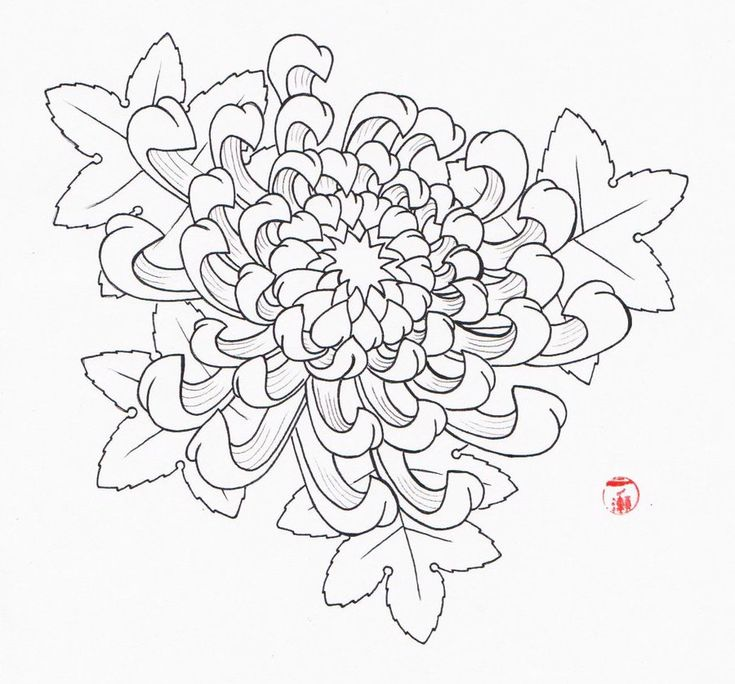 9 best chrysanthemum tattoo images on Pinterest ...