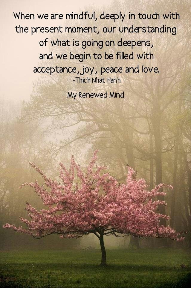 When we are Mindful... ~ Thich Nhat Hahn..*