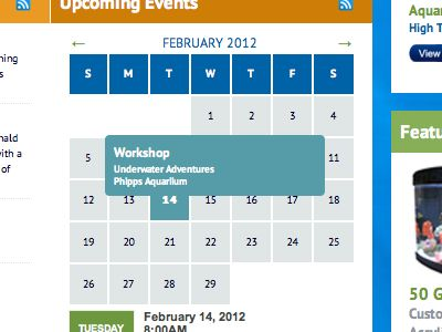 could be a smart way to solve calendars online, dont like the look and feel but its a nice idea, #web design
