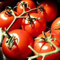 Aquí te damos una receta para hacer una mascarilla de tomate para eliminar la grasa de la cara. Es un remedio casero muy fácil y muy efectivo.